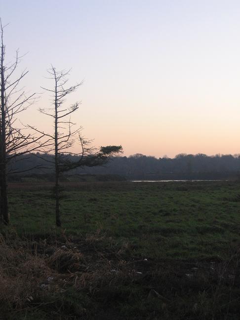Evening scene in Midleton, Co. Cork