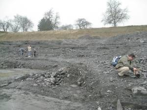 Looking for fossils in Holzmaden